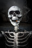 Ainda vida que fuma o esqueleto humano com cigarro Fotos de Stock