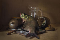 Ainda vida que salga peixes Imagens de Stock Royalty Free