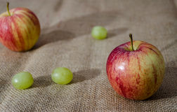 Ainda vida rústica com fruto e foco raso Imagem de Stock Royalty Free