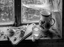 Ainda vida rústica com jarro Foto de Stock