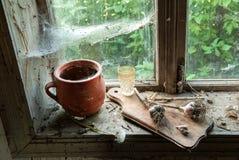 Ainda vida rústica com jarro Foto de Stock Royalty Free