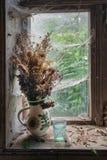 Ainda vida rústica com o ramalhete de flores secadas Fotografia de Stock