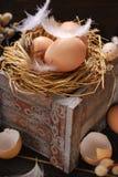 Ainda vida rústica com os ovos no ninho na caixa de madeira para easter Fotografia de Stock Royalty Free