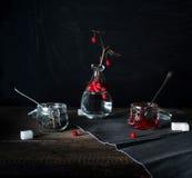 Ainda vida rústica viburnum do ramo, chá em um círculo grande e frascos em uma tabela de madeira Fundo preto Fotografia de Stock