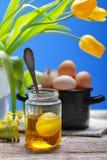 Ainda vida retro com ovos e tulipa Fotografia de Stock