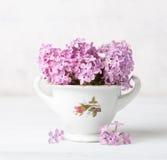 Ainda a vida retro com pequeno empalidece - o ramalhete cor-de-rosa do lilás contra o fundo de uma parede branca Fotos de Stock Royalty Free