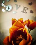 Ainda vida romântica com tulipas alaranjadas Imagens de Stock
