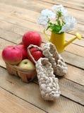 Ainda vida rural com maçãs Imagens de Stock