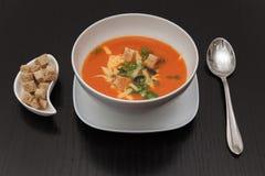Ainda vida: sopa do timato Foto de Stock
