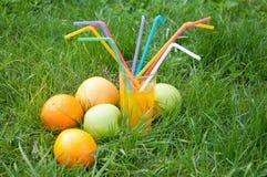 Ainda vida 1 Suco fresco nos frutos próximos de vidro na grama verde Fotografia de Stock Royalty Free