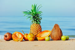 Ainda vida tropical Fotografia de Stock Royalty Free