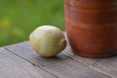Ainda vida, vaso velho da argila e cebola Imagens de Stock