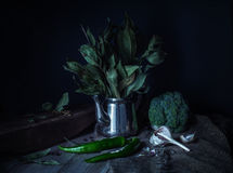 Ainda-vida verde em um estilo rústico Fotos de Stock Royalty Free