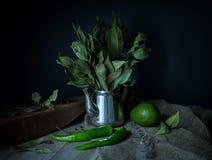 Ainda-vida verde em um estilo rústico Fotografia de Stock Royalty Free
