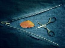 Ainda vida 1 vintage zíper, tesouras e folhas do rododendro no pano Close-up Vista superior Imagem de Stock Royalty Free