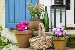 Ainda viva com os potenciômetros de flor Fotografia de Stock