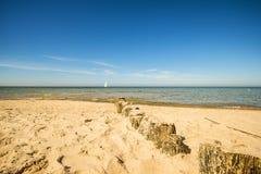 Aines en mer baltique avec le bateau à voile Photo stock