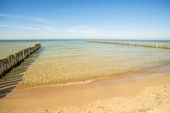 Aines en mer baltique avec le ciel bleu Images libres de droits
