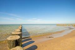 Aines en mer baltique avec le ciel bleu Photos libres de droits