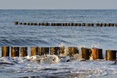 Aines et vagues Photographie stock libre de droits