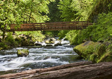 Ainsworth Hiking Trail in Oregon, USA. Royalty Free Stock Image