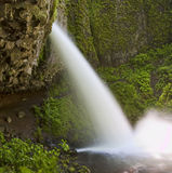 Ainsworth Hiking Trail in Oregon, USA. stock photo