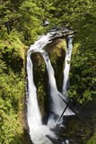 Ainsworth Hiking Trail in Oregon, USA. Stock Image