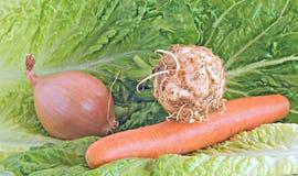Aipo, cebola, e cenoura para a preparação do mirepoix Fotografia de Stock Royalty Free