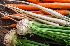 Aipo da pastinaga da cenoura Cenoura e pastinaga do aipo na tabela de carvalho rústica Imagem de Stock