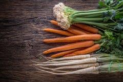 Aipo da pastinaga da cenoura Cenoura e pastinaga do aipo na tabela de carvalho rústica Imagem de Stock Royalty Free