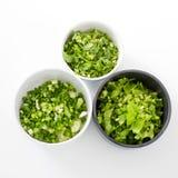Aipo desbastado, brea do estilo do ingredientThai da salsa da cebola da mola Imagem de Stock Royalty Free
