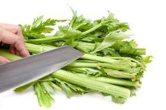 Aipo do corte com a faca no fundo branco Imagem de Stock Royalty Free