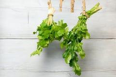Aipo e coentro da folha em um fundo de madeira Fotos de Stock Royalty Free