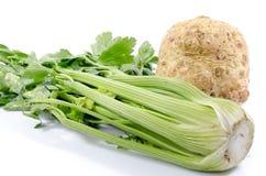Aipo e raiz de aipo verdes Imagem de Stock