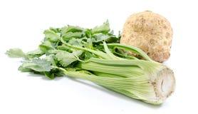 Aipo e raiz de aipo verdes Imagem de Stock Royalty Free