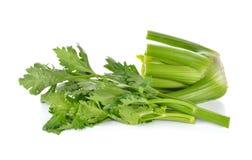Aipo orgânico fresco no fundo branco Imagens de Stock