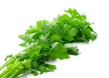 Aipo orgânico fresco no fundo branco Imagem de Stock