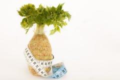 Aipo orgânico para a dieta saudável Fotografia de Stock