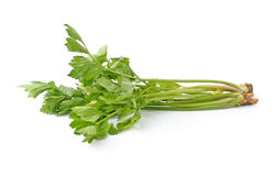Aipo verde fresco Fotos de Stock