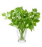 Aipo verde no fundo branco Fotos de Stock