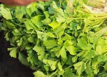 Aipo verde no mercado Imagens de Stock Royalty Free