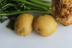 Aipo vermelho com emparelhamento dos vegetais de raiz das batatas Fotos de Stock Royalty Free