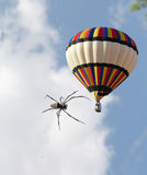 The air balloon and a big tropical spider Royalty Free Stock Photo