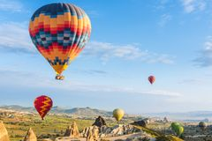 Air balloon over poppies field Cappadocia, Turkey royalty free stock image