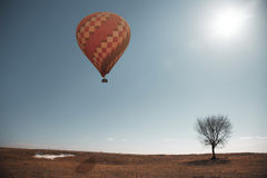 Air balloon and tree Royalty Free Stock Photo