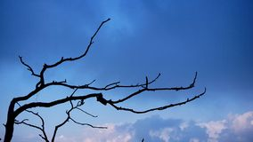 Air, Blue, Sky Royalty Free Stock Images