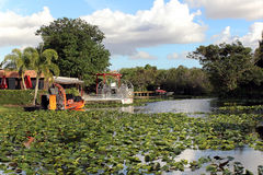 Air-boats in the swamp. For tour to see alligators and crocodiles Stock Photography