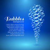 Air Bubbles Background. Air bubbles. Vector background for your design Stock Images