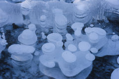 Air Bubbles on Frozen Lake Alabama Stock Image