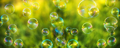 Air bubbles on grass background. Abstract background royalty free stock images